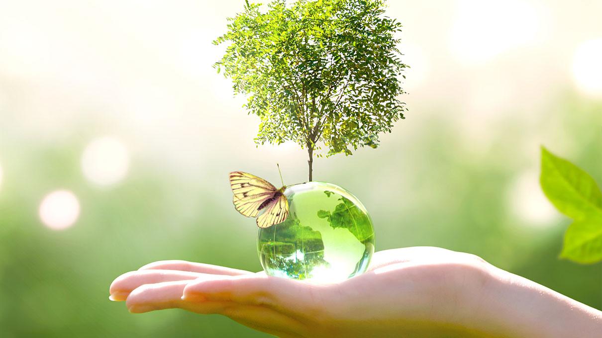 mano acqua e natura che rappresentano la sostenibilità del pianeta